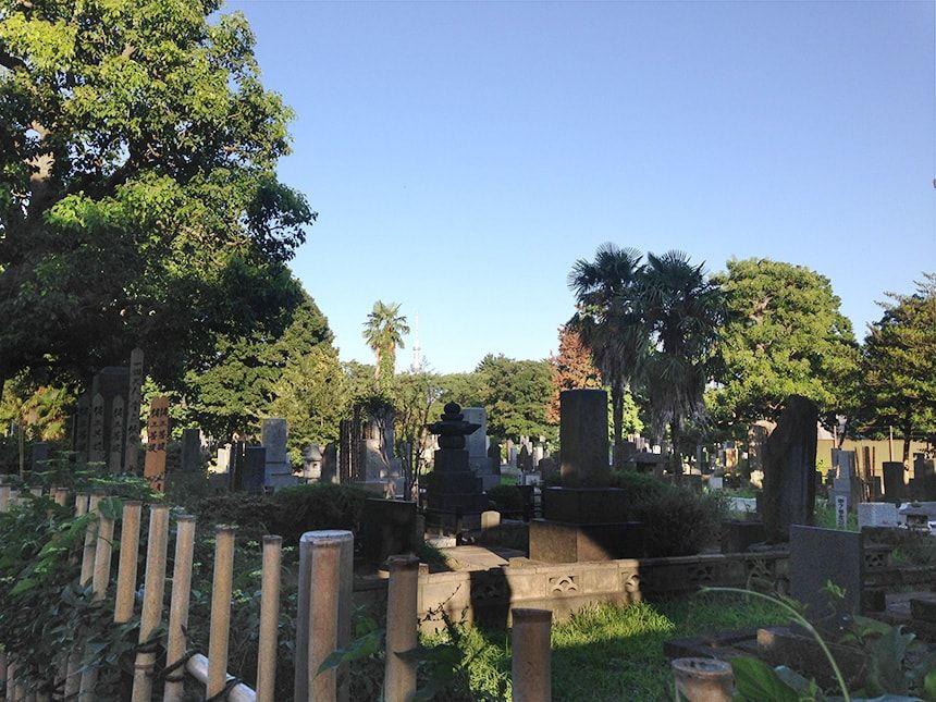 谷中霊園10