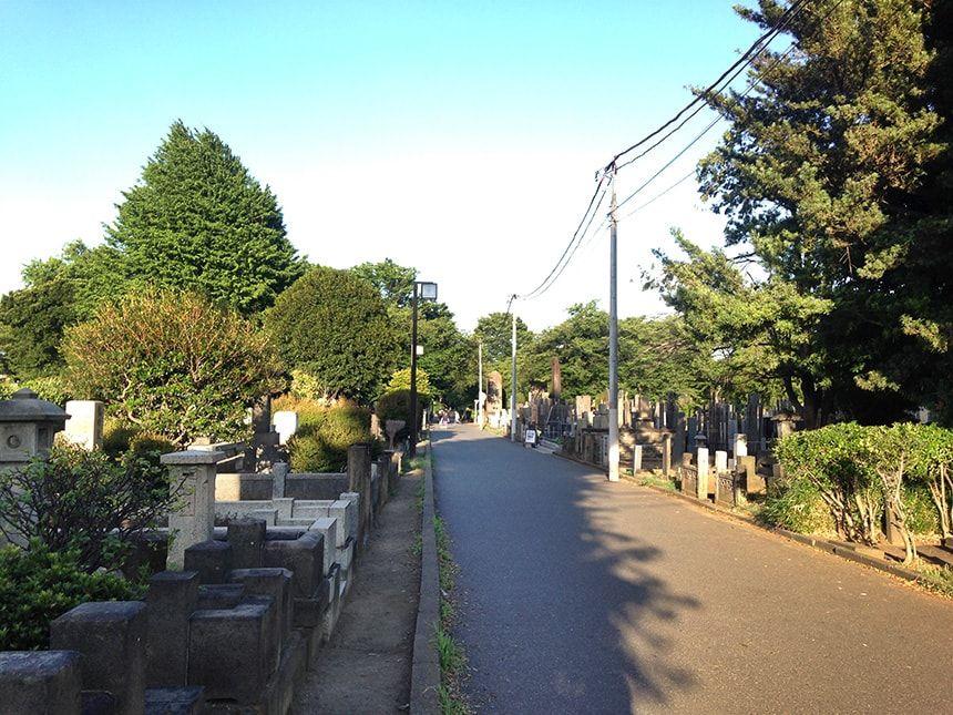 谷中霊園11