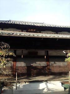 常徳寺墓地_9514