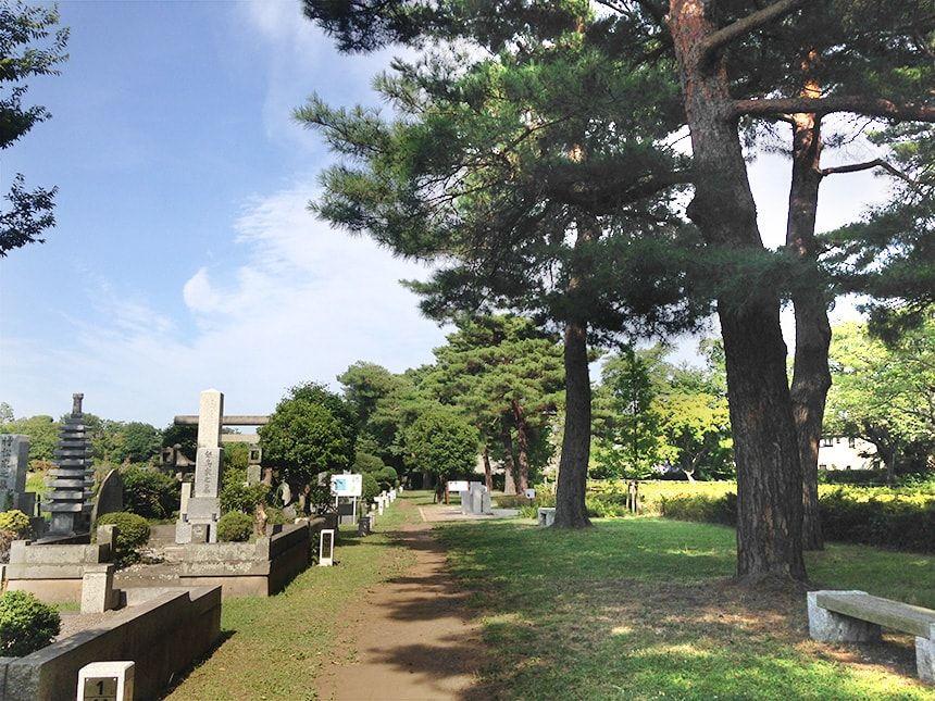 小平霊園5