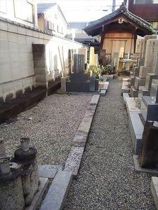 常徳寺墓地_9531