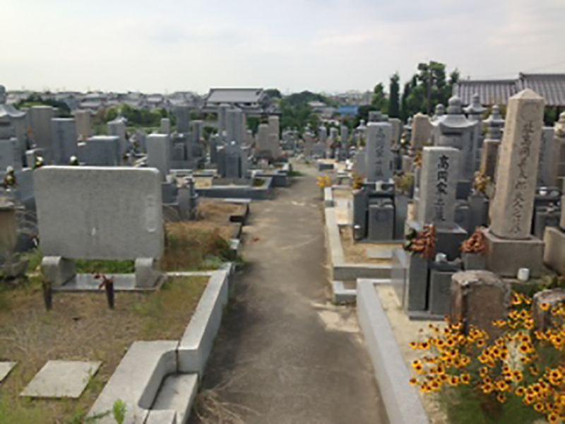 菅生墓地_9533