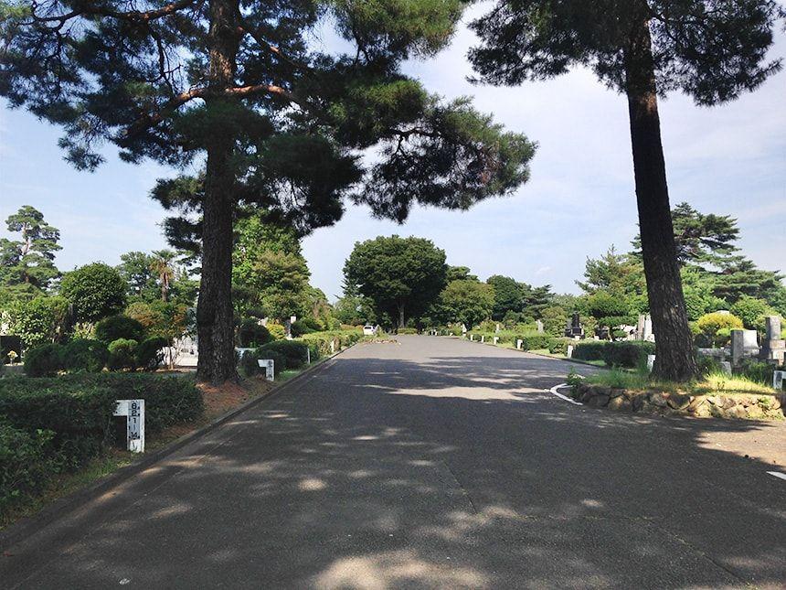 小平霊園9