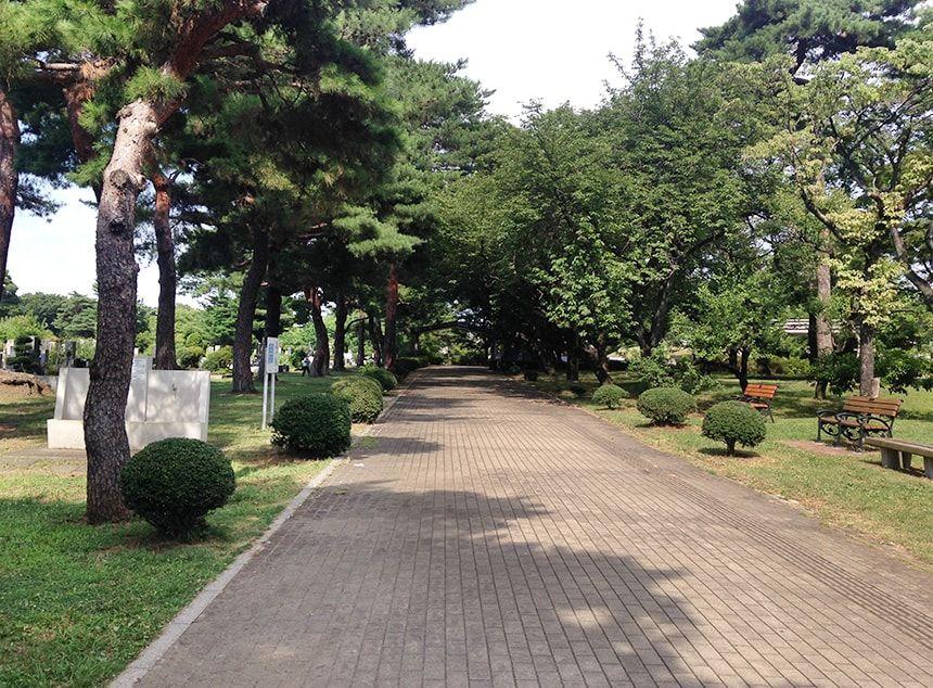 小平霊園14