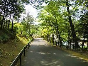 栗東市営 栗東墓地公園_9644