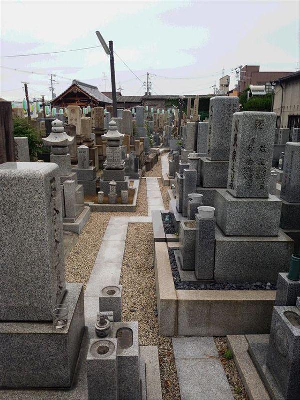 高井田共同墓地_9647