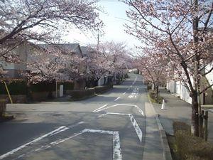 宝塚霊園_9648