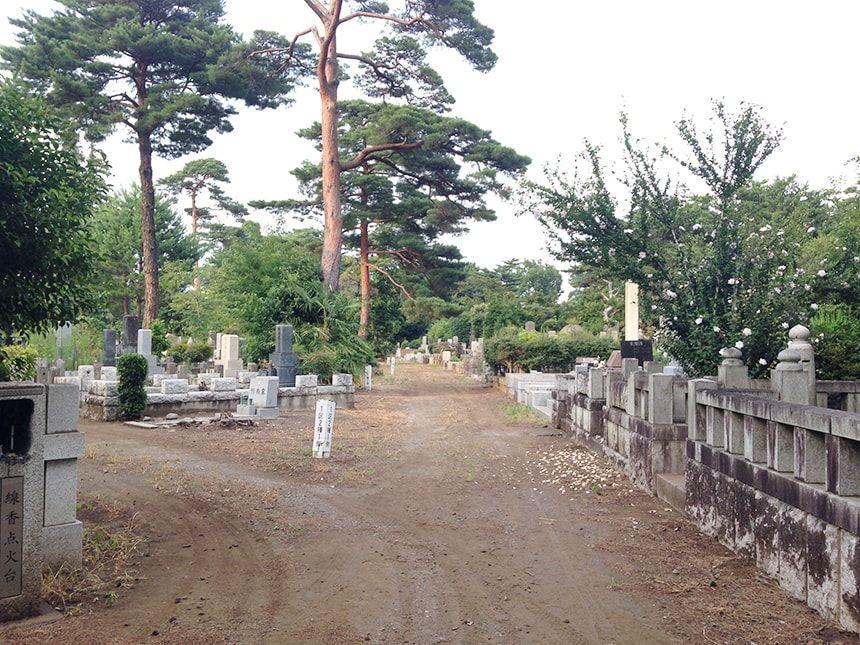 多磨霊園24