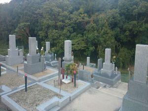 野中共同墓地_9674