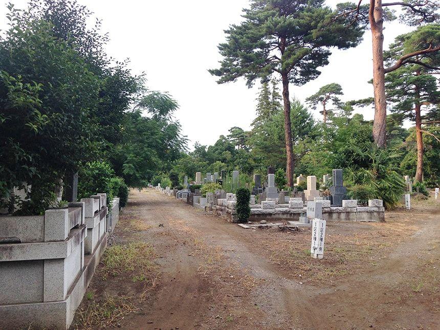 多磨霊園25