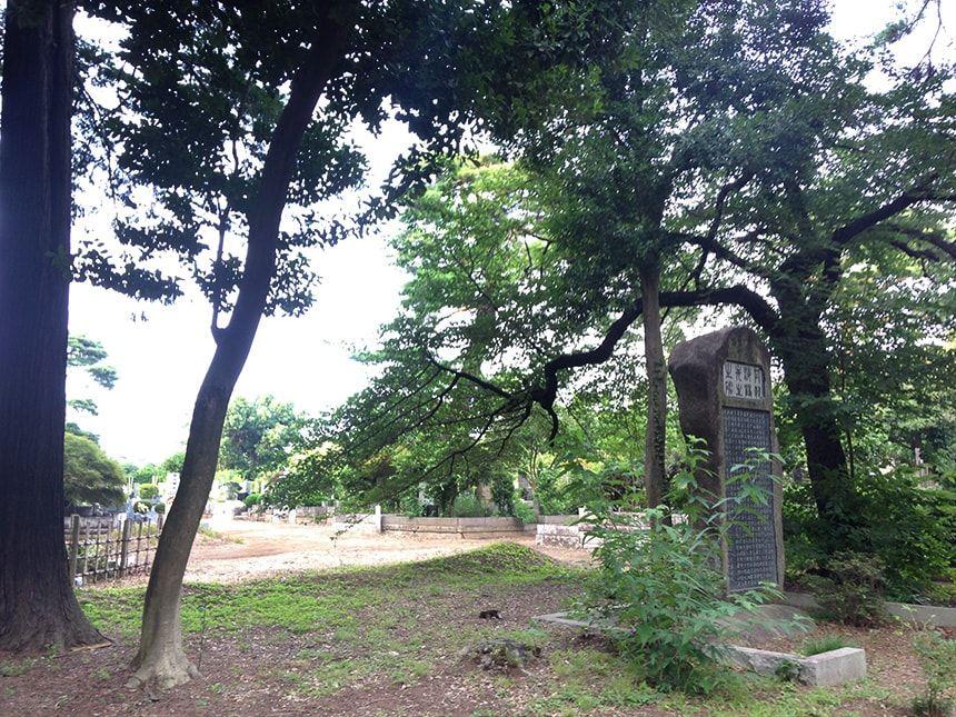 多磨霊園28