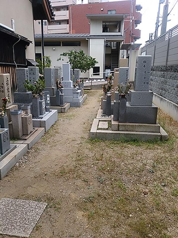 塚西 壽光寺墓地_9730