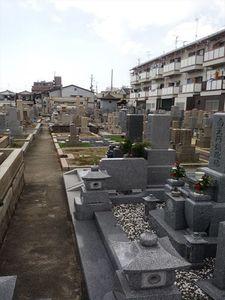 岩田墓地_9895
