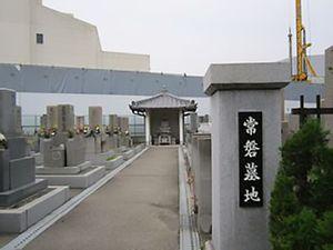 常磐墓地_9931