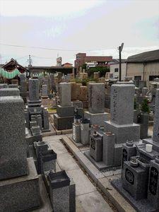高井田共同墓地_9966